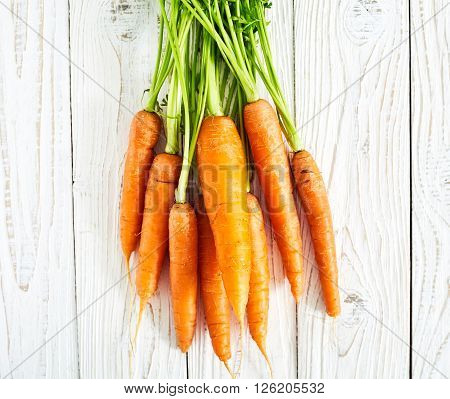 Fresh carrots with green leaves stalks or haulm on white  wood background