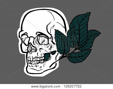 A stylized vector skull, with green leave.