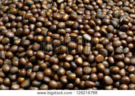 Chestnut Thailand .Chestnut roasted nuts in Thailand