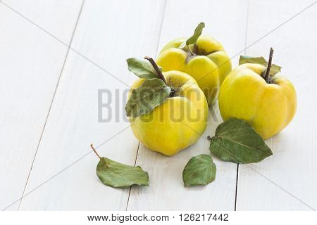 Quince fruits on a white wooden background. Quince fruits.
