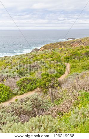 Trail And Beach At Garrapata State Park, California