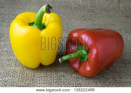 Colored bell peppers on wooden table, pepper, bell, colourful, color