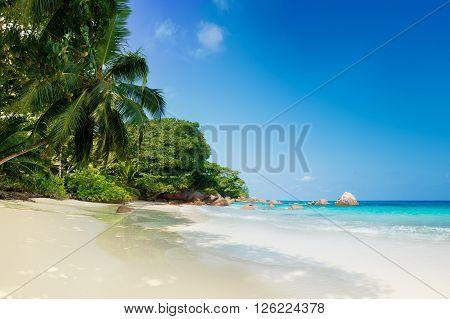 tropical anse lazio beach on praslin island seychelles
