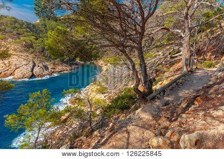 The hiking trail over Cala Pola bay, on coast of the Balearic Sea near Tossa de Mar, in the summer morning, Costa Brava, Catalunya, Spain