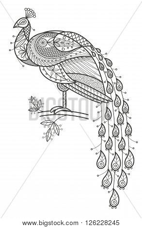 Vector illustration decorative bird peacock on white background. Fashion trend of adult coloration. Bird peacock with elements oriental motif. Black and white bird peacock. Modern vector design.