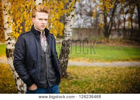Fall season and people concept. Portrait of young stylish fashionable man in plaid shirt and jacket against autumn birch trees. Yellow leaves background