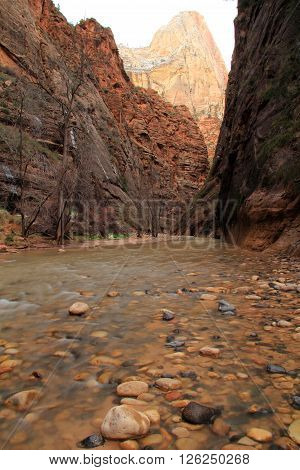 The Narrows in Zion National Park, Utah