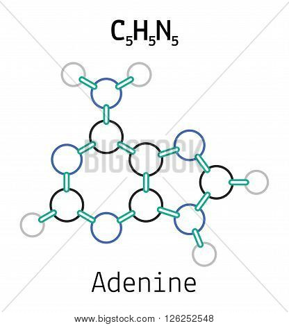 C5H5N5 adenine 3d molecule isolated on white