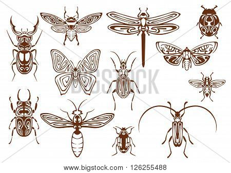 Brown tribal butterfly, bee, moth, dragonfly, wasp, ladybug, scarab and stag beetles, bumblebee, firefly and shield bugs. Decorative insects, adorned by ethnic ornaments for tattoo, embellishment or mascot design usage