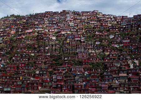 Amazing buddhist monastery in Tibet, Sichuan province, China