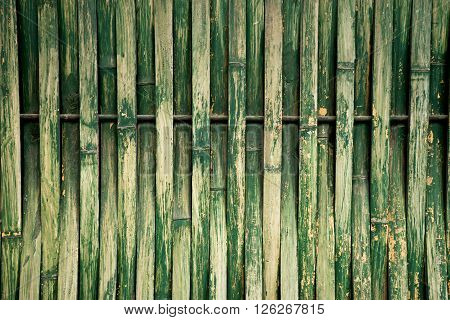 Green Dry Bamboo