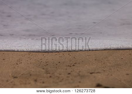 Ocean foam background spreads across the wet sand on a Southern California beach.