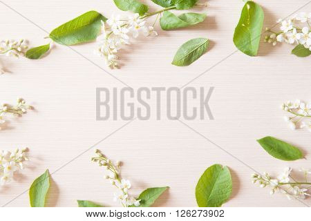 Branches with tiny white flowers and green leaves on light wooden table. Fresh light spring background with copyspace.