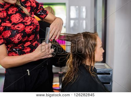 Hairdresser Styling Hair Of Customer In Beauty Salon