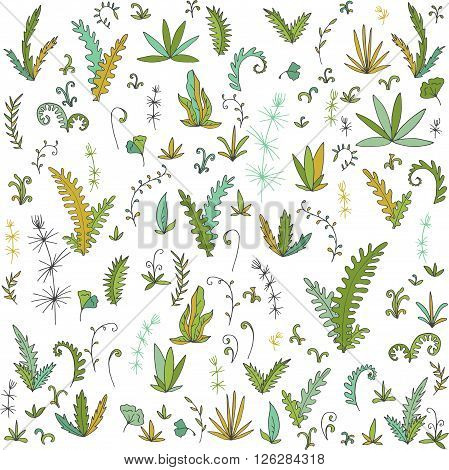 abstract vector fern leaves, bushes and plants, cartoon wild herbs, hand drawn vector elements