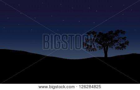 Tree in night scenery in the hills