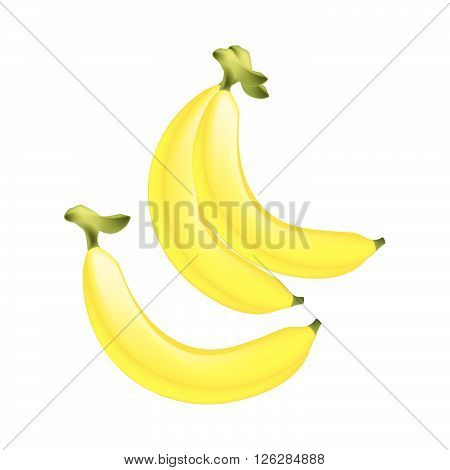 Illustration of Fresh Ripe and Sweet Banana Isolated on A White Background.