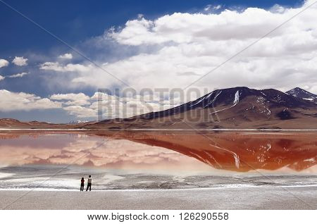 South America - Bolivia. The surreal landscape is nearly treeless punctuated by gentle hills and volcanoes near Chilean border.