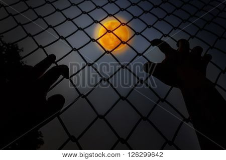 Hands Climbing Iron Bar In Dark Night With Full Moon Background