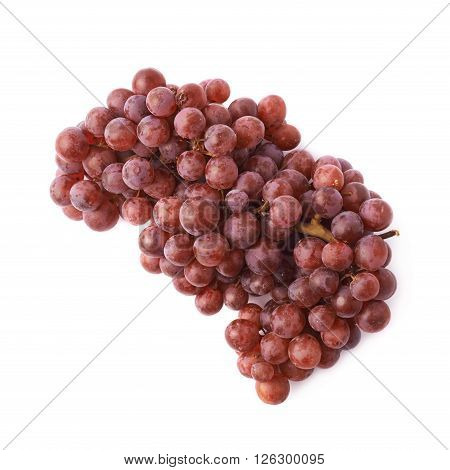 Branch of the dark grape isolated over the white background