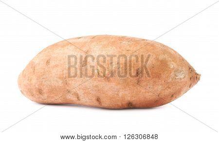 Sweet potato plant or Ipomoea batatas isolated over the white background
