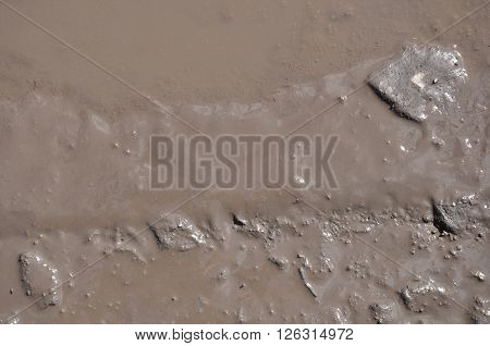 The texture of mud. Wet dirt. Puddle