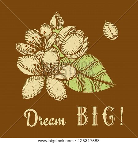 Dream big poster with engraved cherry blossom in vintage style vector