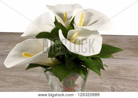 White calla lilies in the vase on the wooden background