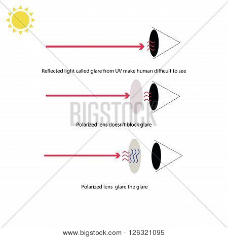 Infographic about how polarized lens of sunglasses prevent our eyes from glare from reflection of UV ray