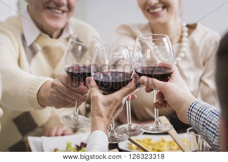 Happy family toasting holding glasses with wine smiling