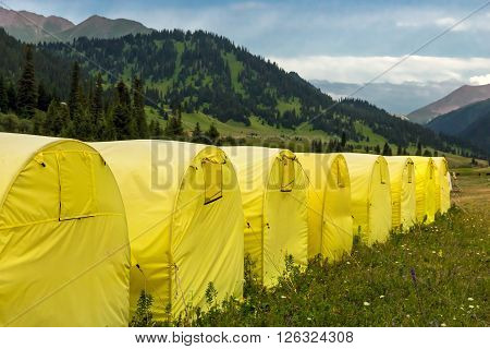 Travel Camp at Kyrgyz Steppe with Forest and Grassy Hills and Higher Rock Mountains on Background