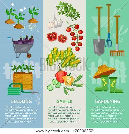 Garden banner garden tools working in the garden vegetable growing