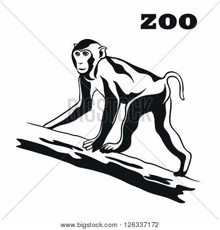 Monkey. Black vector emblem on a white background