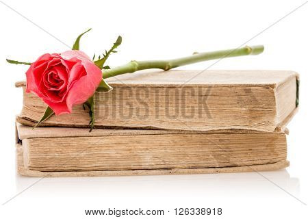 Two old books with rose on the white background