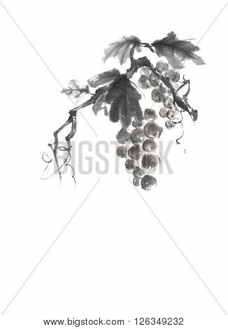 Bunch of grapes Japanese style original sumi-e ink painting. Great for greeting cards or texture design.