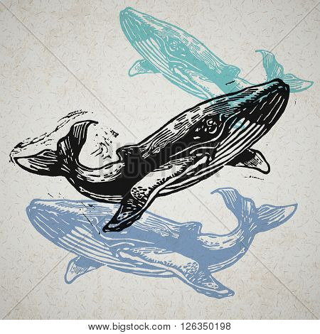 Vector Whale animals in abstract composition. Linocut whales in different colours on the old paper