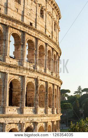 Colosseum morning light, Rome, Italy.