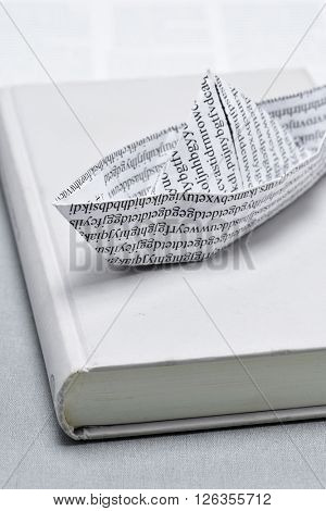 closeup of a paper boat, made with a printed paper with non-sense words, on a book