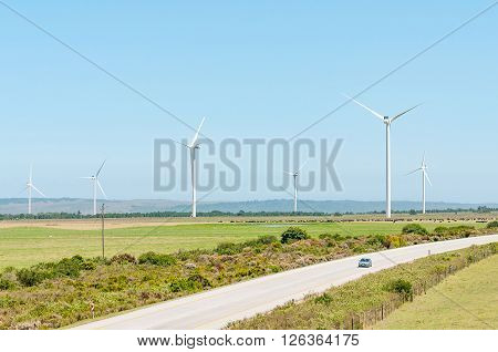 HUMANSDORP SOUTH AFRICA - FEBRUARY 28 2016: The N2 National Road near Humansdorp with wind driven turbines and cattle in the back