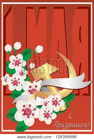Card for day of Spring and Labor. Mayday. 1 may card in retro style with branch of cherry flowers and russian symbol of labor gold hammer and sickle. Russian translation: 1 may. Vector illustration
