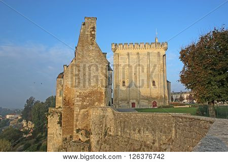 Keep and walls of Pons Castle, France ** Note: Soft Focus at 100%, best at smaller sizes