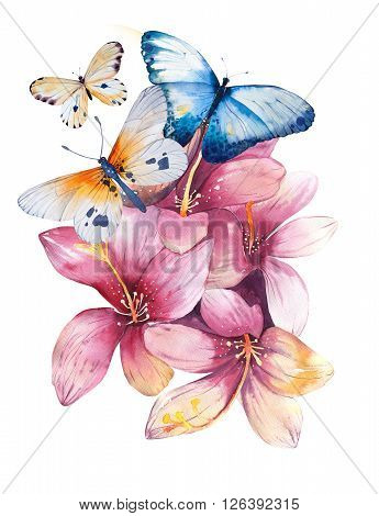 Hand drawn watercolor illustration in vintage style. watercolour hand drawn roses butterflies Spring design. Isolated on vintage white.