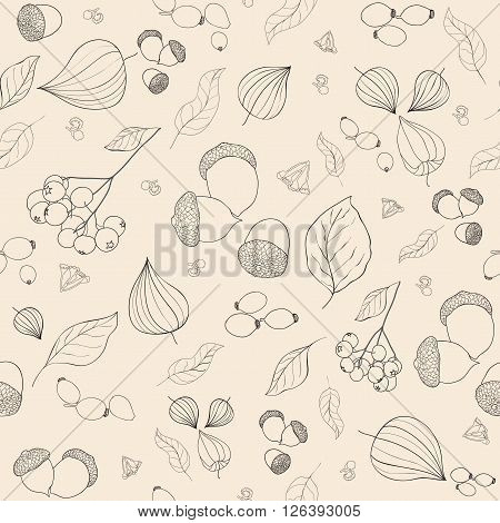 Hand drawn fall acorns rowan and rosehip berries tansy flowers and leaves background pattern.