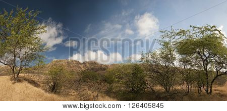 View of Diamond Head from low ground on Oahu Hawaii. Also resembles an African landscape.