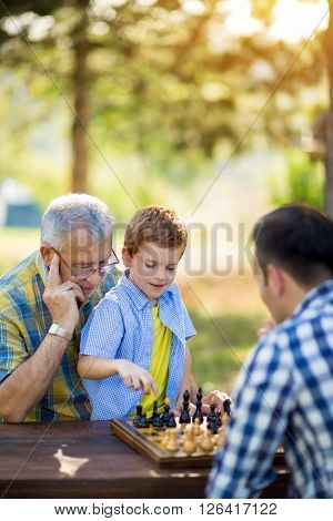 chess, strategy, board, nature and family concept
