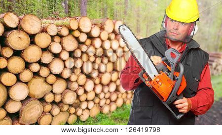 The Lumberjack working in a forest. Firewood as a renewable energy source.