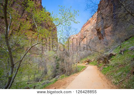 Walking Trail To Narrows