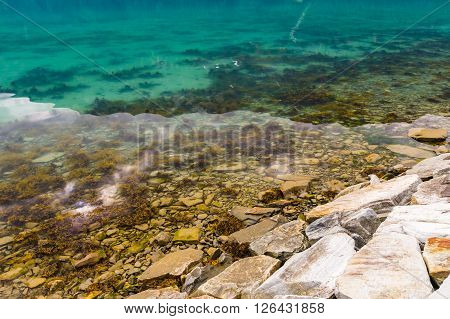 Stony shore and transparent water of norwegian fjord