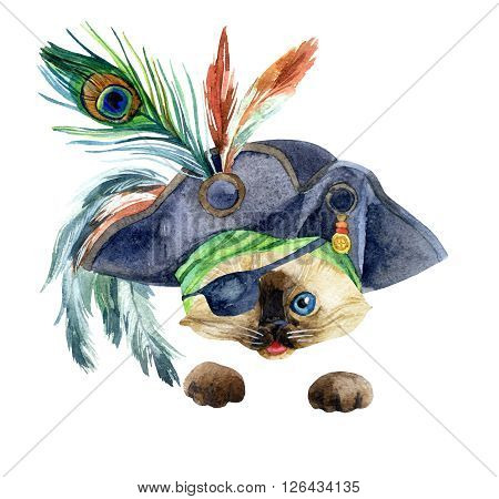 Watercolor cat in a pirate bandana and a hat with feathers. Portrait of the kitten as a pirate. Hand painted illustration.