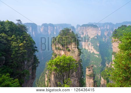 rocks in Zhangjiajie National Park in Hunan China